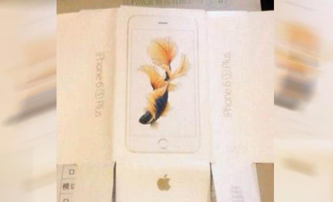iPhone 6S - Schmetterlingskoi Display