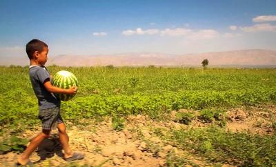 Vereinte Nationen kämpfen gegen Welthunger