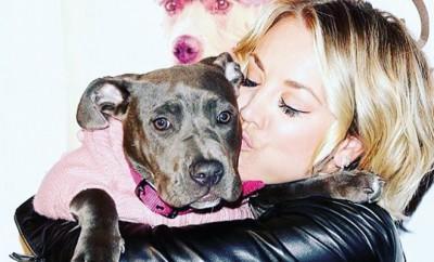 Big Bang Theory- Darstellerin Kaley Cuoco liebt ihre Hunde.
