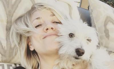 Kaley Cuoco liebt Tiere.