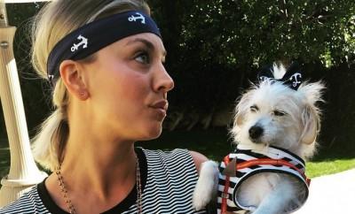 Big Bang Theory: Kaley Cuoco steht dazu ein Fan von Justin Bieber zu sein.