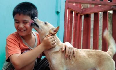 9-Jähriger gründet sein eigenes Tierheim und rettet Straßenhunde.