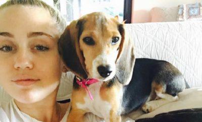 Miley Cyrus und Liam Hemsworth: Date in Malibu entfacht Spekulationen.
