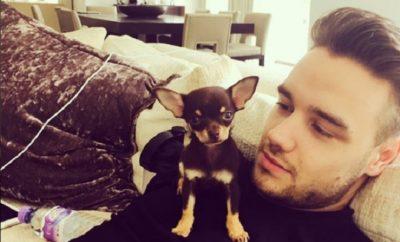 One Direction: Liam Payne verkündet Familienzuwachs auf Instagram!