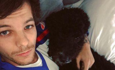 Harry Styles: Liebeserklärung von Louis Tomlinson?
