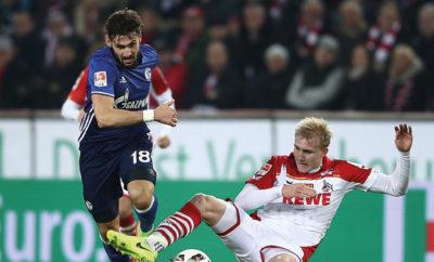 Daniel Caligiuri fühlt sich wohl beim FC Schalke 04.