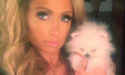 Paris Hilton: Peinlicher Oben Ohne-Fail!
