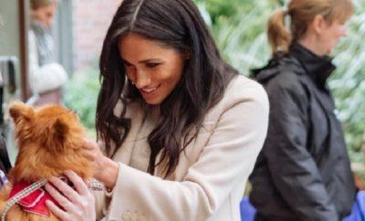 Meghan Markle: Geheime Botschaft an Kate Middleton