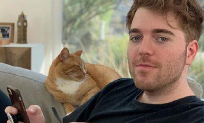 Shane Dawson: Ejakulation auf seine Katze macht ihn zum Twitter-Trend